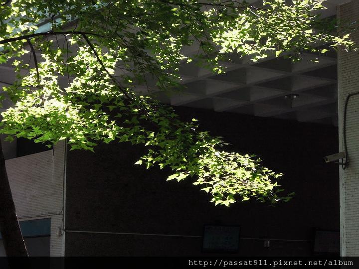 20140821台中高工_0056.jpg