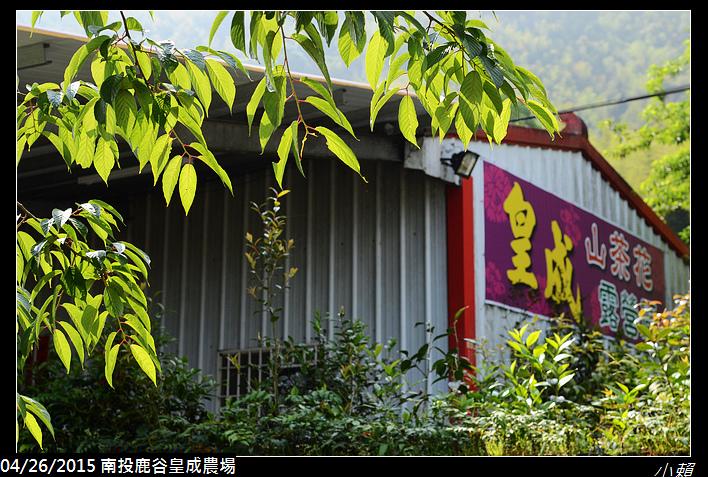 20150425南投鹿谷皇成農場_0194.jpg