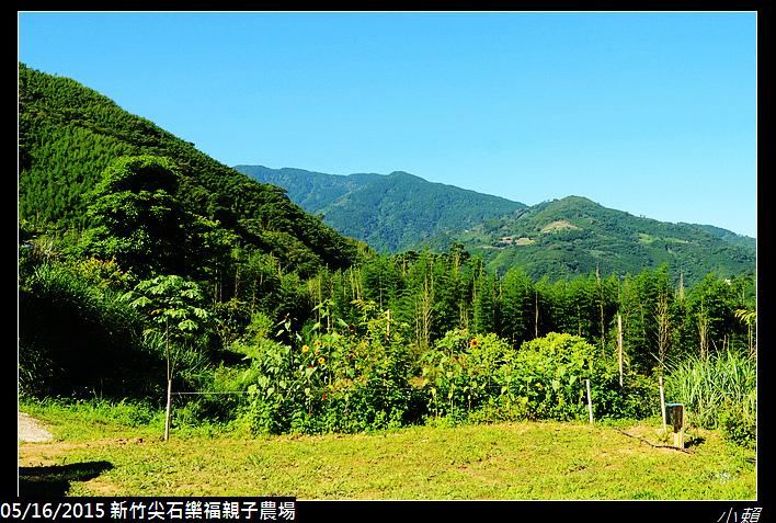 20150516Y新竹尖石樂福親子有機農場_0011.jpg