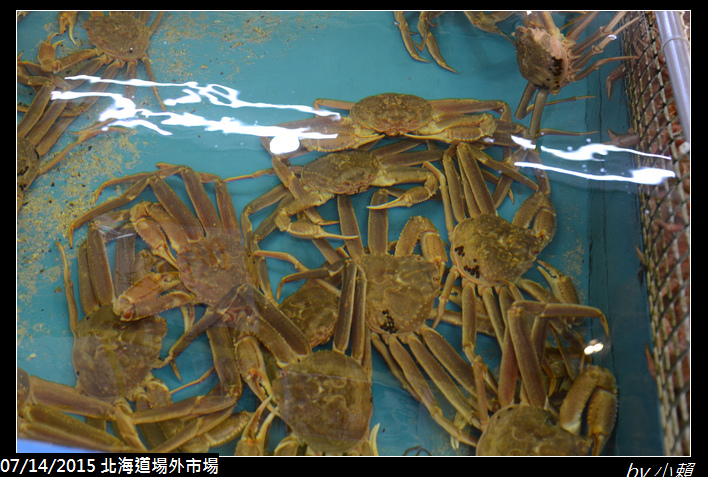 20150714北海道札幌場外市場_0079.jpg