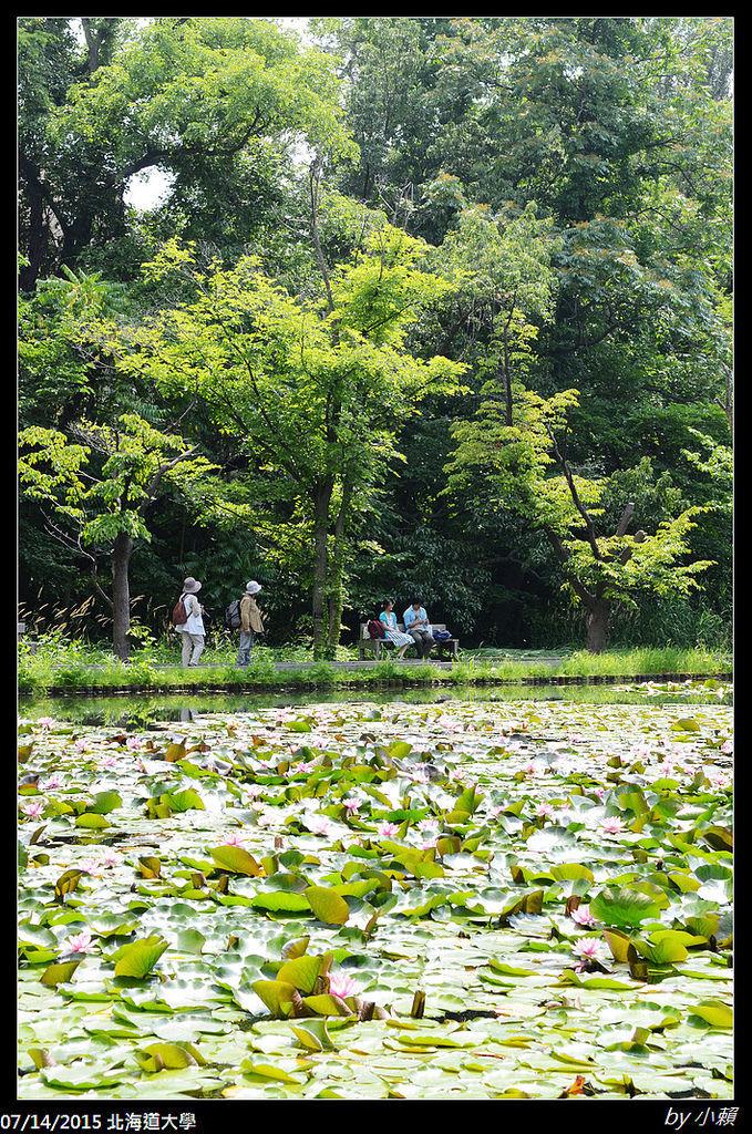 20150714北海道大學_0077.jpg