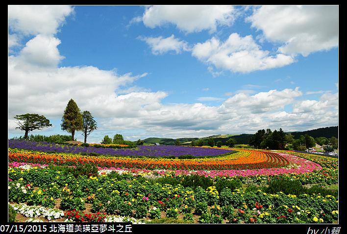 20150715北海道美瑛拼布之路-亞斗夢之丘_0037.jpg