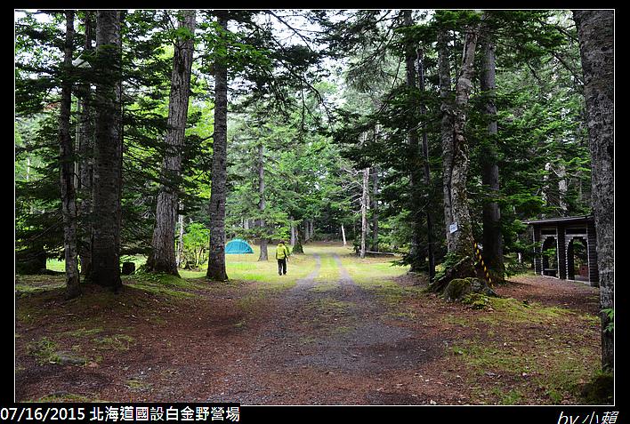 20150715北海道美瑛國設白金野營場_0024.jpg