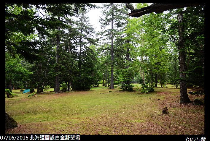 20150715北海道美瑛國設白金野營場_0014.jpg