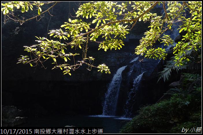 20151017魚池鄉澀水水上步道_0139.jpg