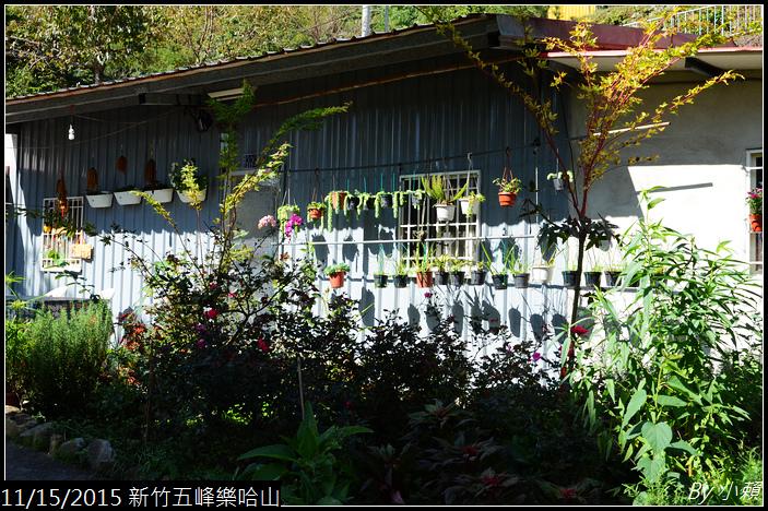 20151114新竹五峰樂哈山_0296.jpg