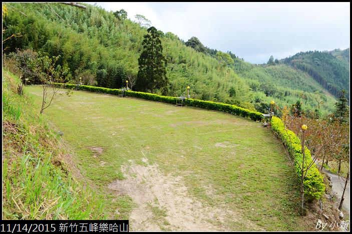 20151114新竹五峰樂哈山_0014.jpg