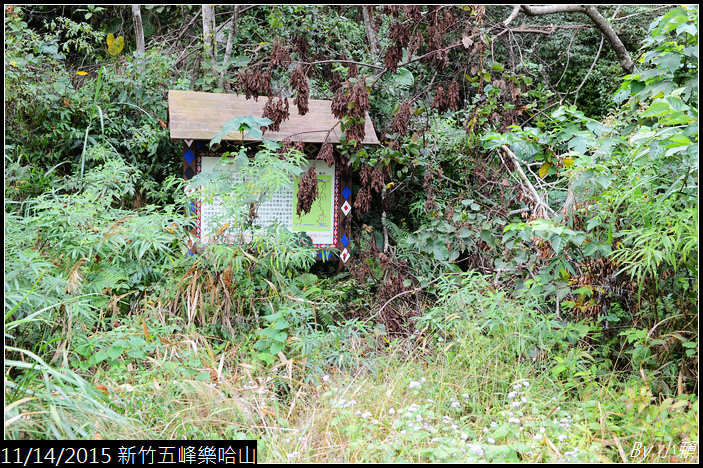20151114新竹五峰樂哈山_0021.jpg