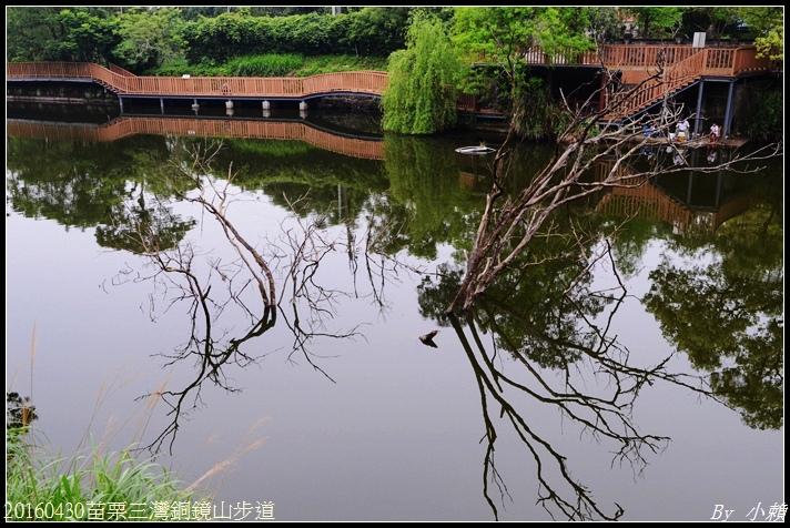20160430苗栗三灣銅鏡山步道56.jpg