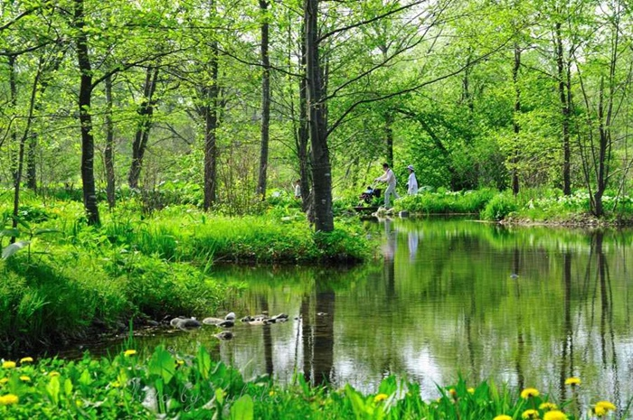 六花の森.jpg