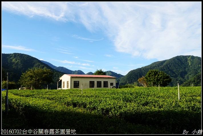 20160702台中谷關春露茶園營地250.jpg