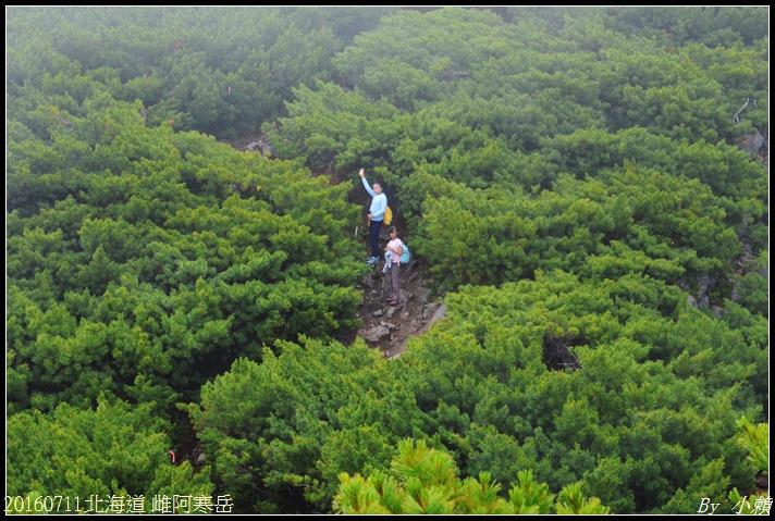 20160711北海道雌阿寒岳108.jpg