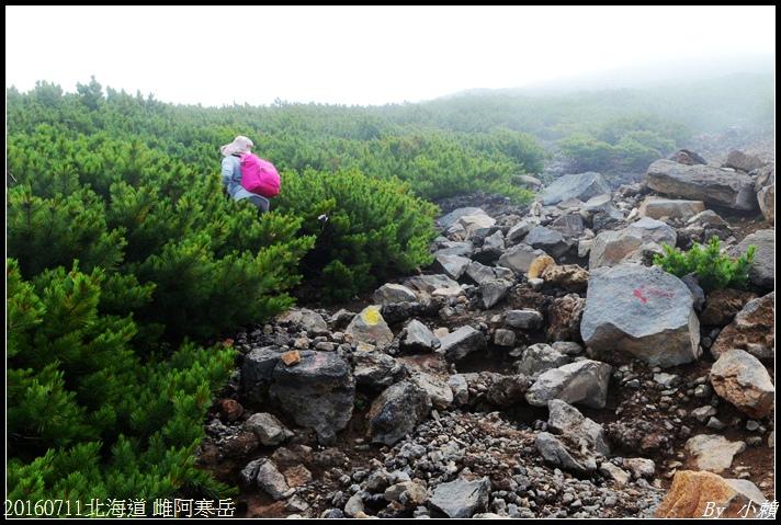 20160711北海道雌阿寒岳149.jpg