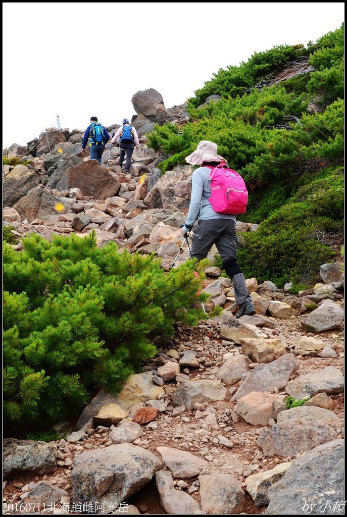 20160711北海道雌阿寒岳212.jpg