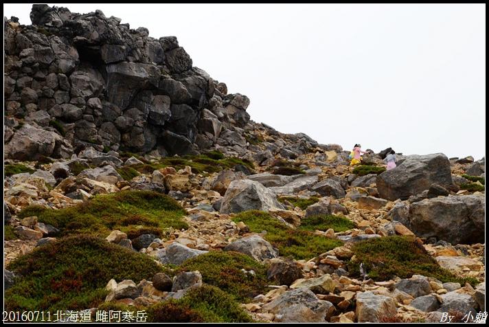 20160711北海道雌阿寒岳294.jpg