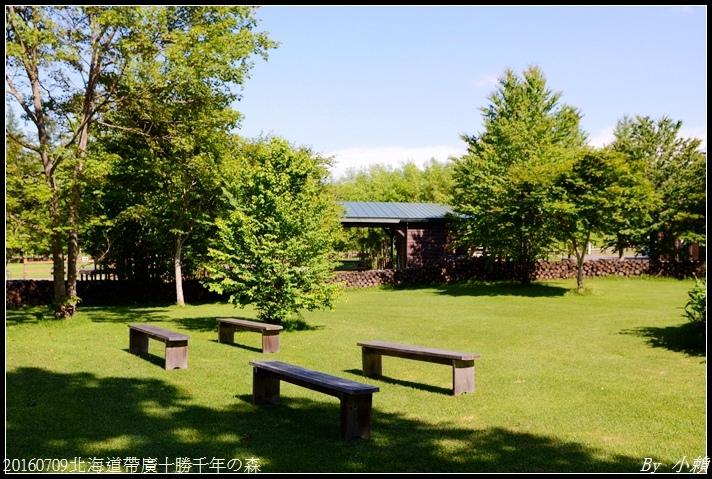 20160709北海道帶廣千年の森015.jpg