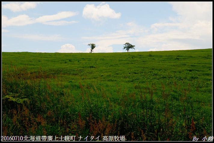 20160710北海道帶廣上士幌町 ナイタイ 高原牧場007.jpg