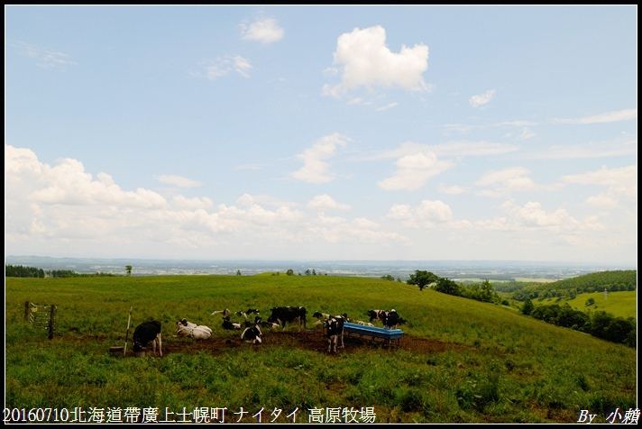 20160710北海道帶廣上士幌町 ナイタイ 高原牧場009.jpg