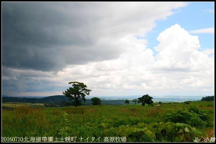20160710北海道帶廣上士幌町 ナイタイ 高原牧場017.jpg