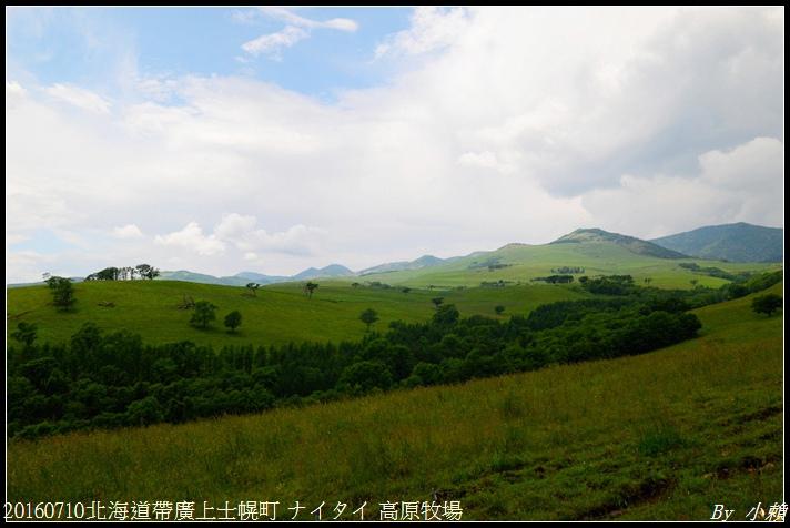 20160710北海道帶廣上士幌町 ナイタイ 高原牧場018.jpg
