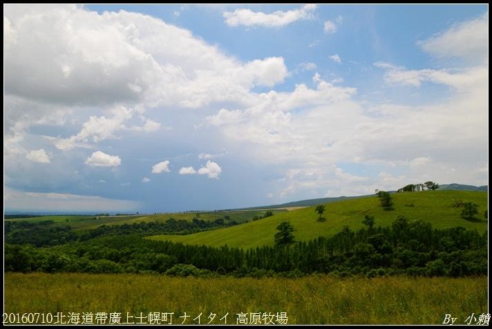 20160710北海道帶廣上士幌町 ナイタイ 高原牧場035.jpg