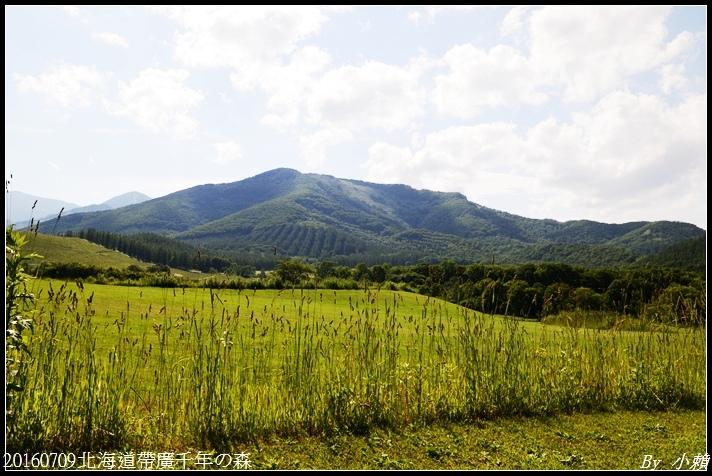 20160709北海道帶廣千年の森065.jpg