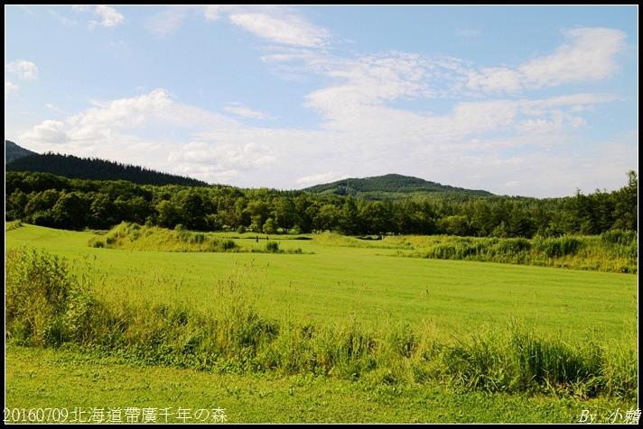 20160709北海道帶廣千年の森074.jpg