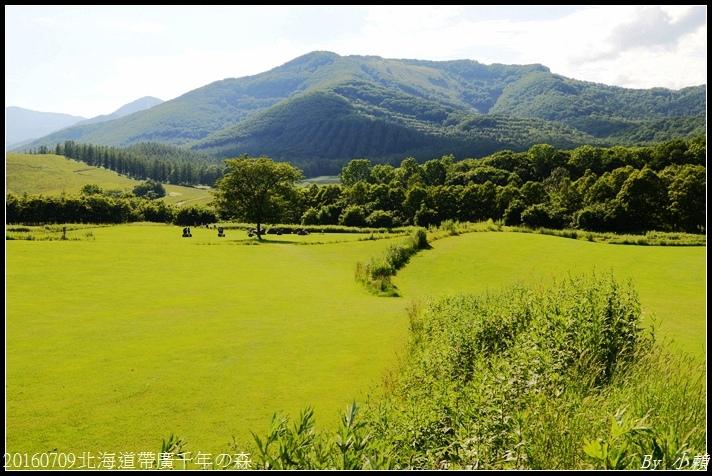20160709北海道帶廣千年の森075.jpg