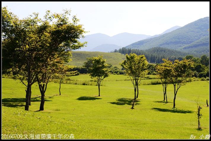 20160709北海道帶廣千年の森085.jpg