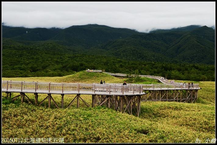 20160712北海道知床五湖21.jpg