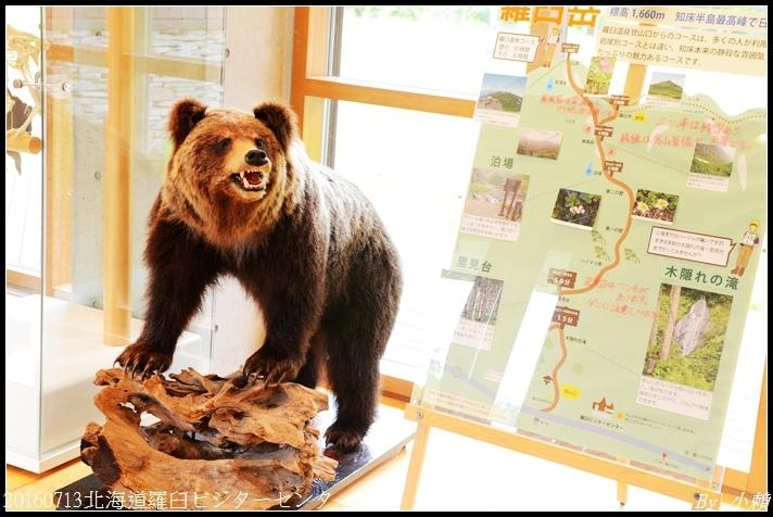 20160713北海道羅臼ビジターセンター05.jpg