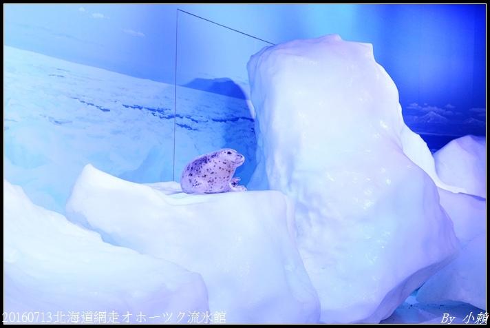 20160713北海道網走オホーツク流氷館037.jpg