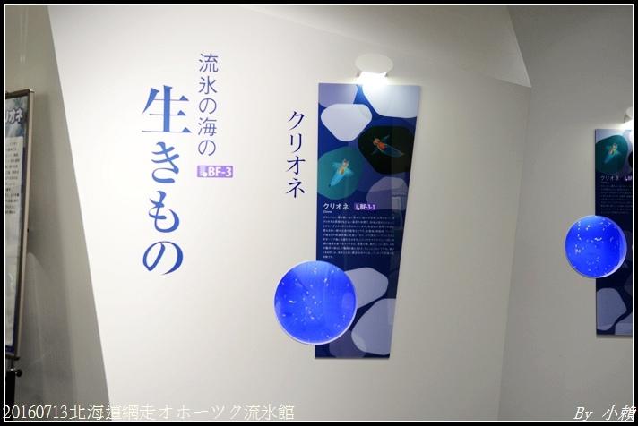 20160713北海道網走オホーツク流氷館094.jpg