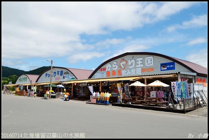 20160714北海道留辺蘂山の水族館03.jpg
