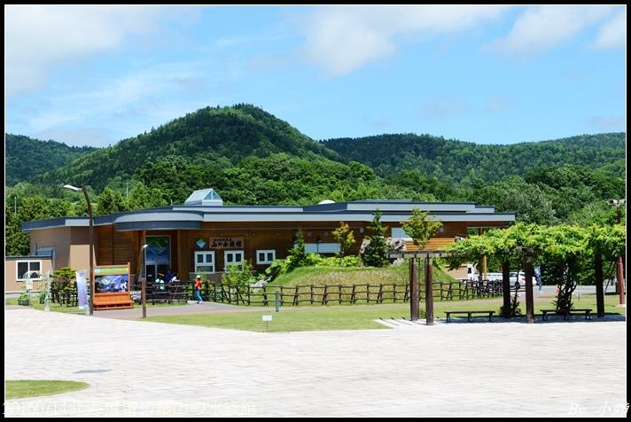 20160714北海道留辺蘂山の水族館05.jpg