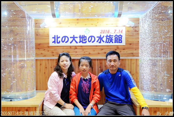 20160714北海道留辺蘂山の水族館47.jpg