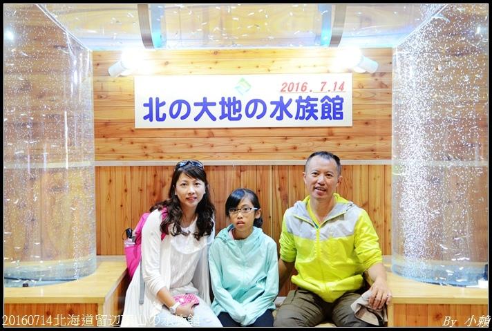 20160714北海道留辺蘂山の水族館49.jpg