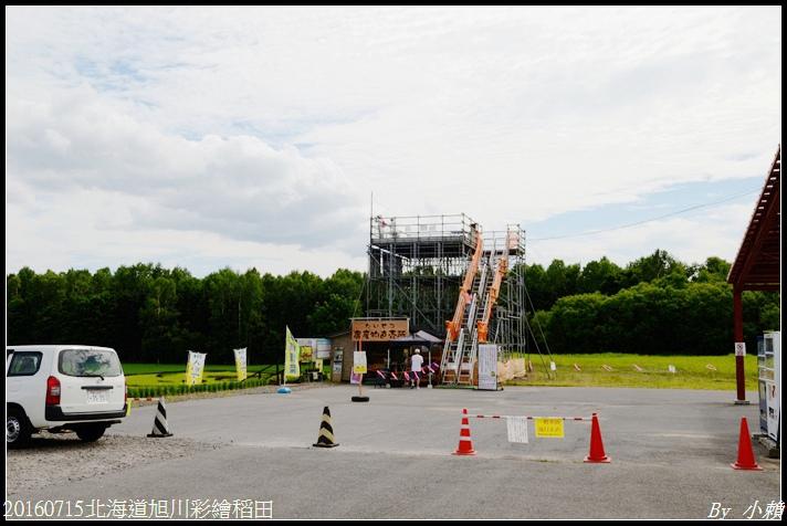 20160715北海道旭川彩繪稻田06.jpg