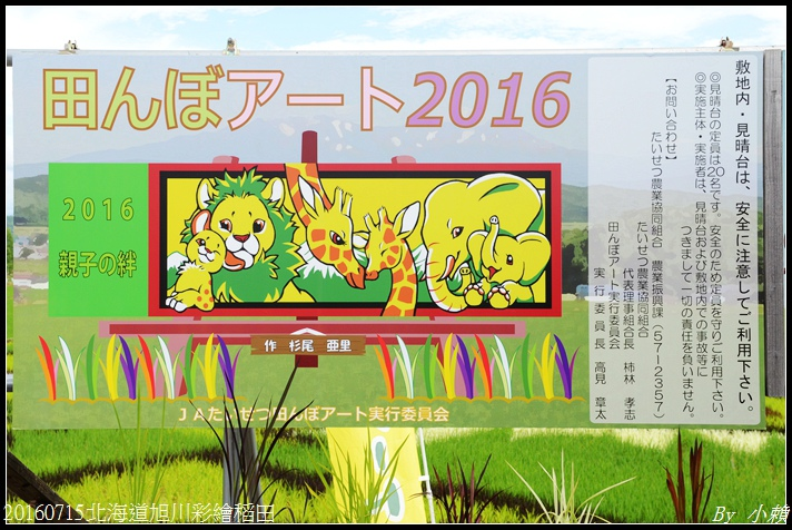 20160715北海道旭川彩繪稻田35.jpg
