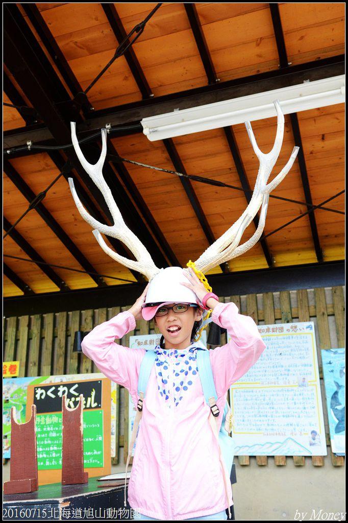 20160715北海道旭山動物園273.jpg
