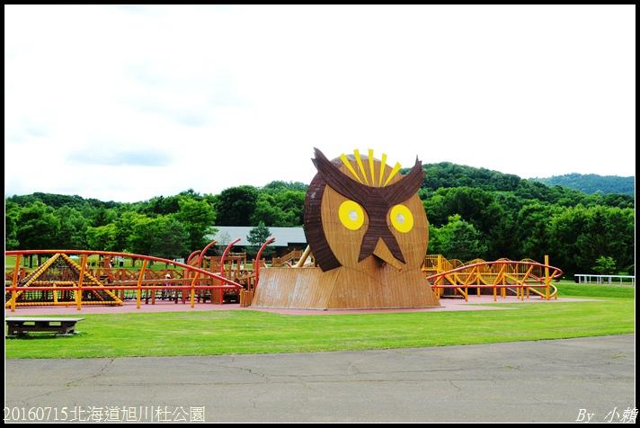 20160715北海道杜公園12.jpg