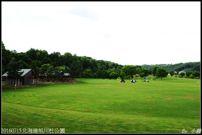 20160715北海道杜公園81.jpg