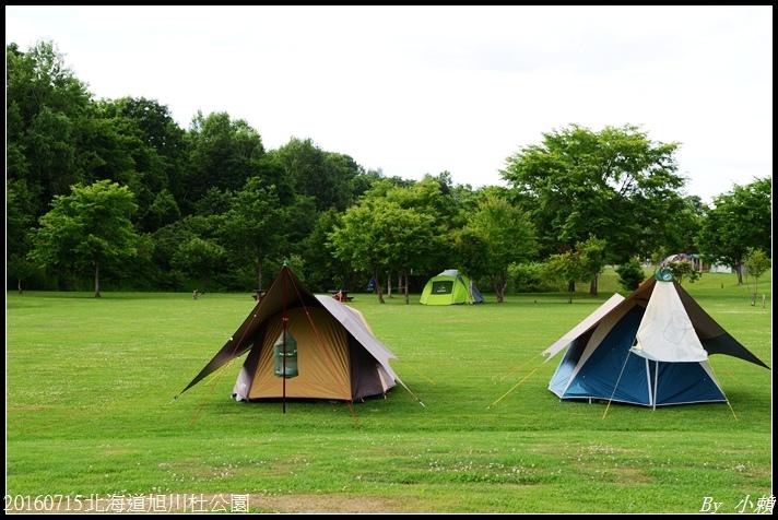 20160715北海道杜公園75.jpg