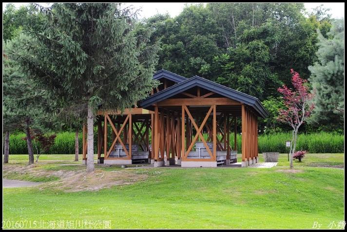 20160715北海道杜公園77.jpg