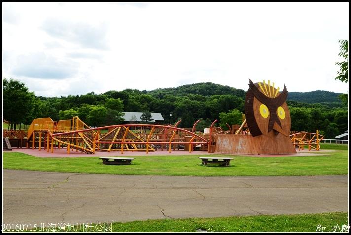 20160715北海道杜公園10.jpg