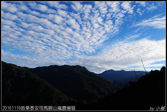 20161119苗栗泰安司馬限山嵐露營區091.jpg