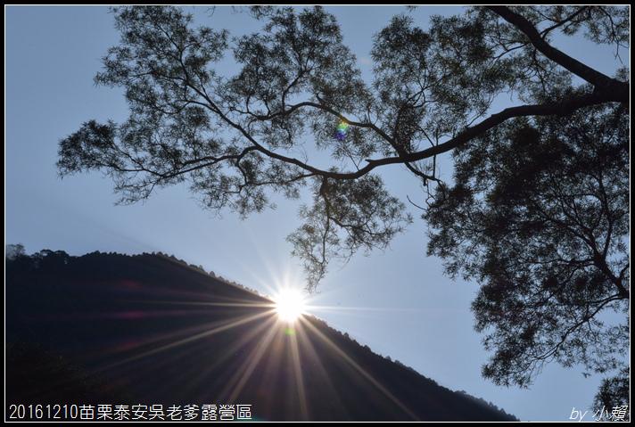 20161210苗栗泰安吳老爹露營區146.jpg