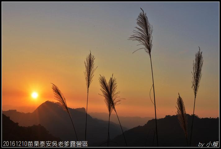 20161210苗栗泰安吳老爹露營區097.jpg