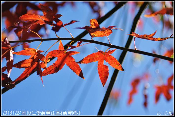 20161224南投仁愛萬豐社區&萬豐國小077.jpg