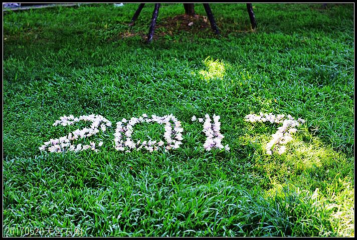 20170521天宮石斛412.jpg